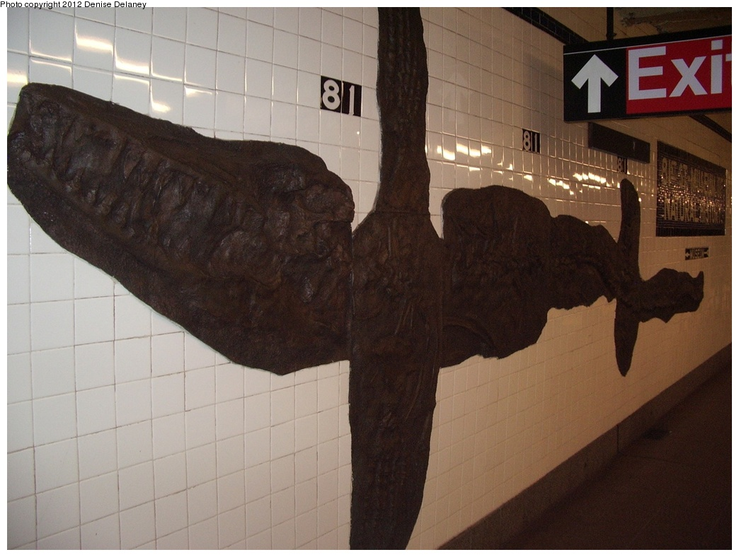 (257k, 1044x788)<br><b>Country:</b> United States<br><b>City:</b> New York<br><b>System:</b> New York City Transit<br><b>Line:</b> IND 8th Avenue Line<br><b>Location:</b> 81st Street/Museum of Natural History<br><b>Photo by:</b> Denise Delaney<br><b>Collection of:</b> Bill Barton<br><b>Date:</b> 10/21/2009<br><b>Artwork:</b> <i>For Want of a Nail</i>, MTA Arts For Transit Collaborative, 1999<br><b>Viewed (this week/total):</b> 0 / 10221