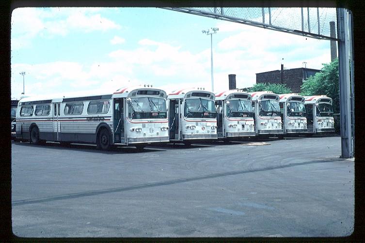 (114k, 753x502)<br><b>Country:</b> United States<br><b>City:</b> New York<br><b>System:</b> New York City Transit<br><b>Photo by:</b> Doug Grotjahn<br><b>Collection of:</b> Joe Testagrose<br><b>Date:</b> 6/23/1981<br><b>Notes:</b> Edgewater Garage<br><b>Viewed (this week/total):</b> 2 / 3285