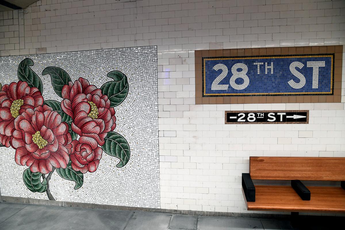 (525k, 1200x800)<br><b>Country:</b> United States<br><b>City:</b> New York<br><b>System:</b> New York City Transit<br><b>Line:</b> IRT East Side Line<br><b>Location:</b> 28th Street<br><b>Photo by:</b> Marc A. Hermann / Metropolitan Transportation Authority<br><b>Date:</b> 1/14/2019<br><b>Artwork:</b> <i>Roaming Underfoot</i>, Nancy Blum, 2019<br><b>License:</b> <a href=https://creativecommons.org/licenses/by/2.0/>Creative Commons Attribution 2.0 Generic</a> via Flickr<br><b>Viewed (this week/total):</b> 1 / 229